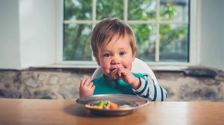 Toddler Nutrition | Picky Eating