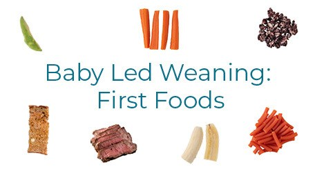 Ready to start baby led weaning, but looking for some good ideas about healthy baby led weaning first foods to feed your baby? Babies need specific nutrients, and feeding them exactly what you are eating often doesn't get them what they need. Find out how to build a balanced and healthy plate for your baby that will help them thrive as they grow! #babyledweaning #firstfoods