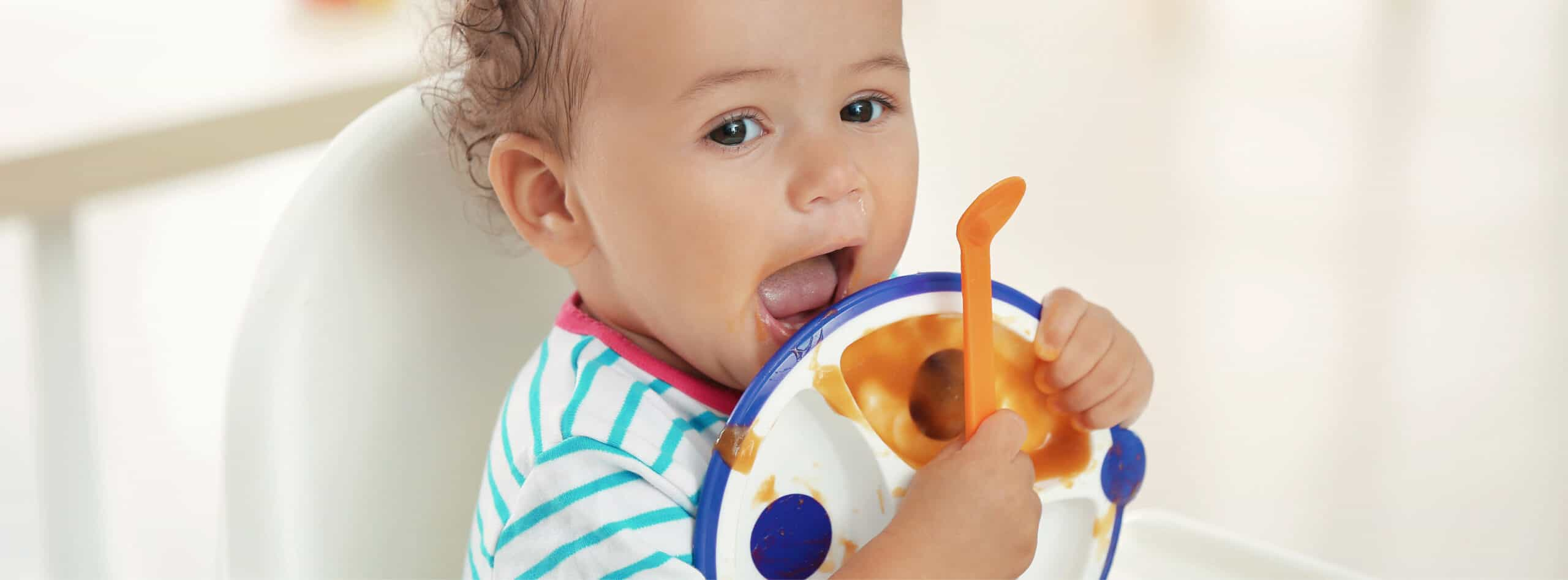 The Best Plates for Babies and Toddlers | New Ways Nutrition