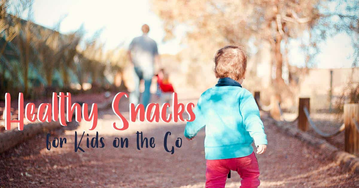 Healthy Snacks for Kids on the Go || New Ways Nutrition