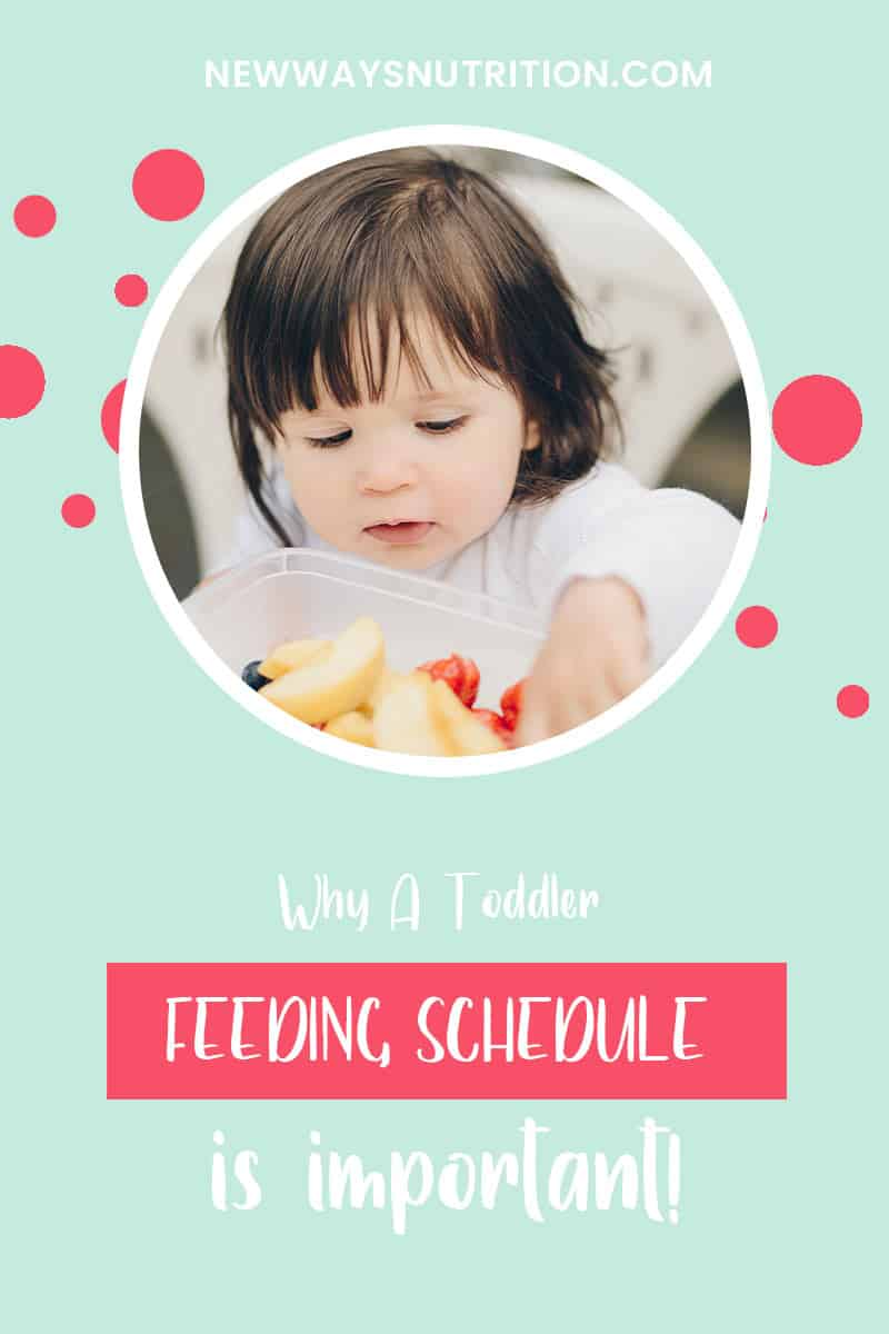 Why a Toddler Feeding Schedule is Important | New Ways Nutrition